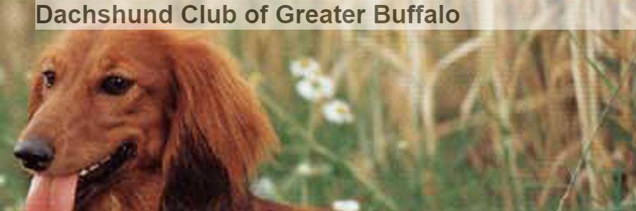 Dachshund Club of Greater Buffalo
